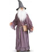 deguisement Gandalf personnage du film le seigneur des anneaux - costume magie et sorcelerie, ZA120S0