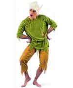 Déguisement elfe adulte, costume féérique pour homme avec perruque et oreilles pointes