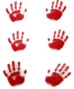 Réalisez une décoration angoissante pour halloween grâce à ce set de 6 empruntes de mains en sang