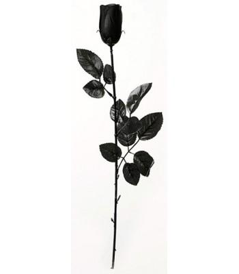 Rose noire gothique halloween