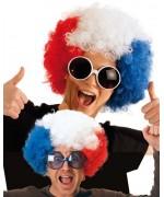 Perruque afro bleu blanc rouge équipe de France - FA116A