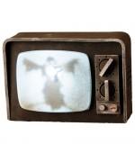 Télévision hantée lumineuse et sonore - VA030A