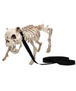 Bouledoque squelette en laisse 50 cm - décoration halloween