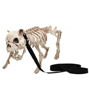 Bouledoque squelette en laisse 50 cm