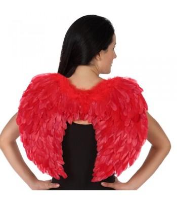 Ailes rouge à plumes