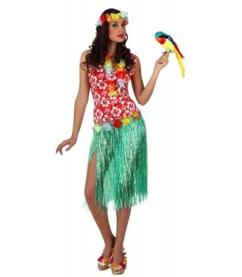 Déguisement hawaienne adulte