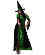 Déguisement de sorcière verte femme