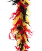 Boa noir jaune rouge, supportez la Belgique