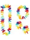 Set Hawaïen multicolore