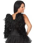 Ailes noires en plumes d'environ 56 x 53 cm, ailes d'anges et démons