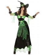 Déguisement sorcière maléfique adulte noir et vert - costume halloween